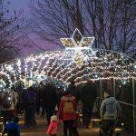 Navidad en el Jardín Botánico de Gijón
