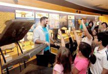 El MUJA y el Centro Tito Bustillo programan nuevas actividades para escolares